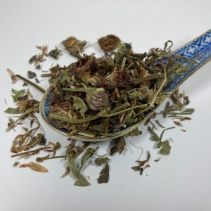 red clover, horses, detox, hormonal balance, immune system, tonic